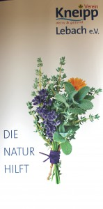 Die Natur..Lebach Rull-up